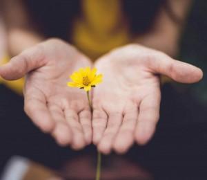 Poder de perdoar