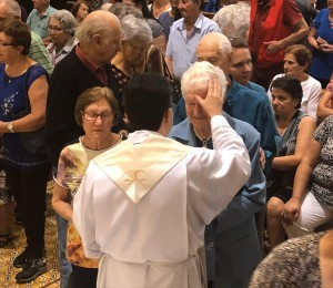Festa de N. Sra. de Lourdes: a protetora dos enfermos