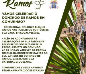 Transmissão das missas e celebrações do Domingo de Ramos e da Semana Santa 2020